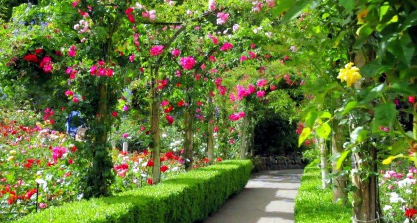 Amazing Cool Maxresdefault Beautiful Gardens