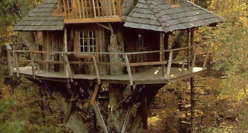 Amazing Tree House World Number Two