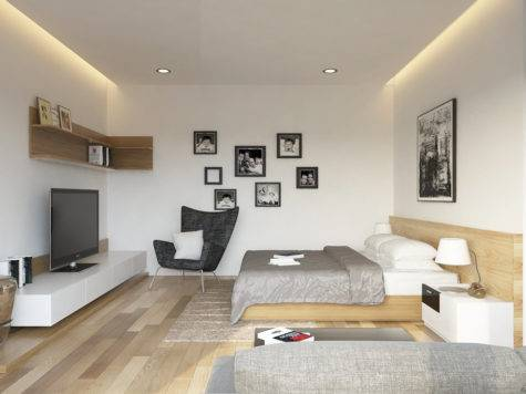 Apartment Bedroom Living Room Interior Design Ideas