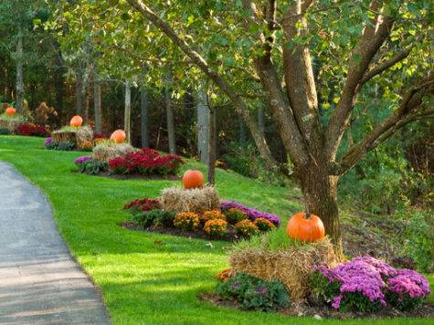 Autumn Halloween Decor Traditional Landscape Other