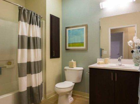 Awesome Apartment Bathroom Ideas Various Styles