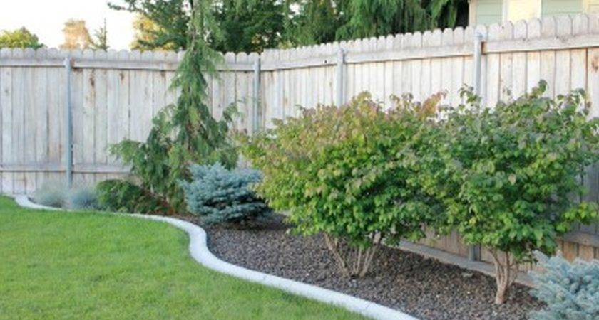Backyard Landscape Designs Budget Large