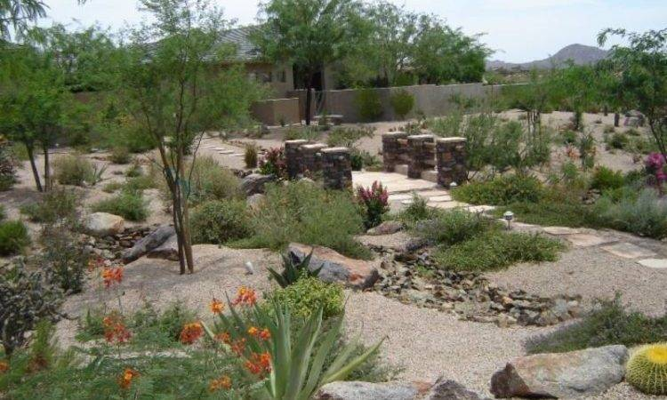 Backyard Landscaping Ideas Arizona Best