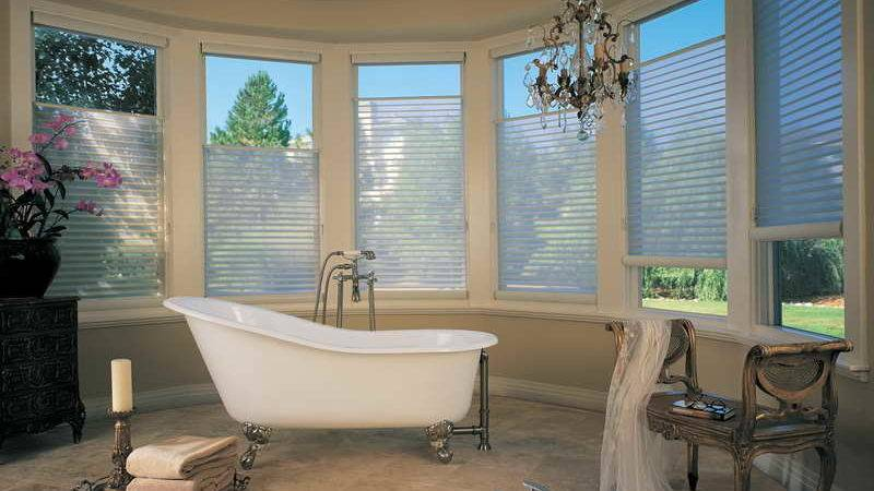 Bathroom Window Treatments Ideas Unique
