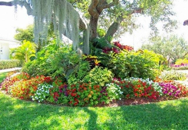 Beautiful Flowers Tropical Garden Ideas Homes