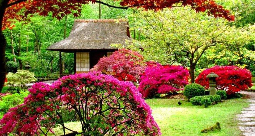 Beautiful Garden Design Japanese Colorful