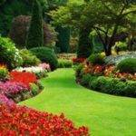 Beautiful Garden Designs Peenmedia