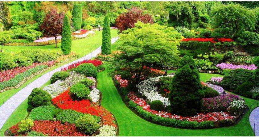 Beautiful Green Garden Design Colorful Plants