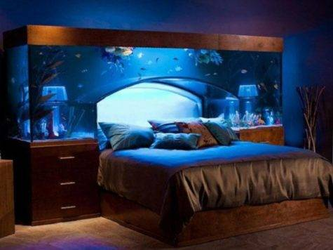 Bedroom Decor Guys Cool Ideas