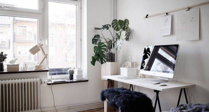 Bedroom Living Room Work Space One Coco Lapine