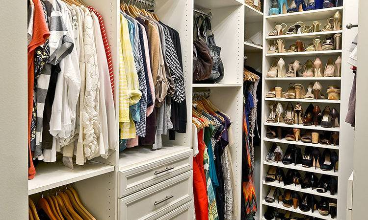Best Closet Organization Ideas Designs