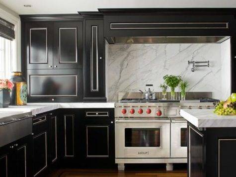 Black White Kitchen Transitional