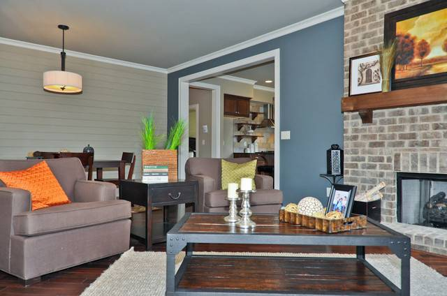 Blue Accent Wall Living Room Birmingham Signature