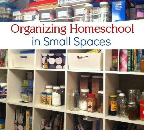 Captivating Small Space Organizing Best