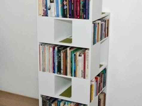 Catcase Bookcase Ideal Playground Your Cat