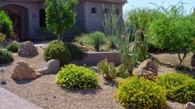 Cheap Backyard Desert Landscaping Ideas Izvipi