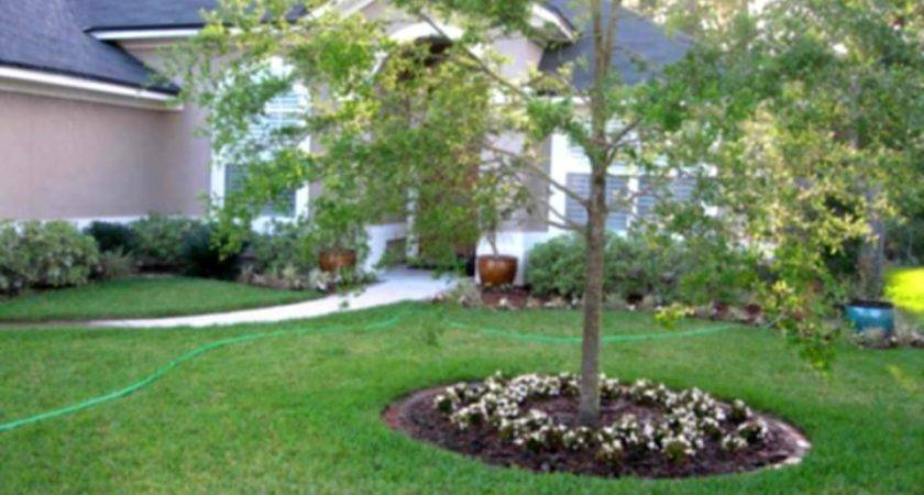 Cheap Landscaping Affordable Ideas