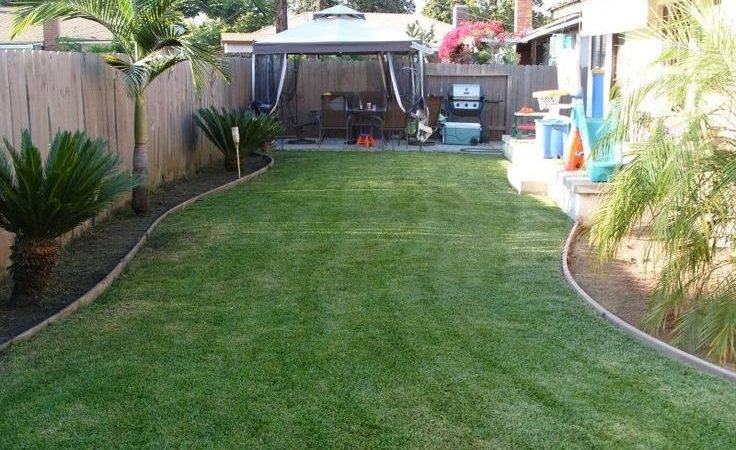 Cheap Landscaping Ideas Awesome Small Simple Design