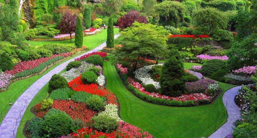 Choose Best Garden Designer Gardening Flowers