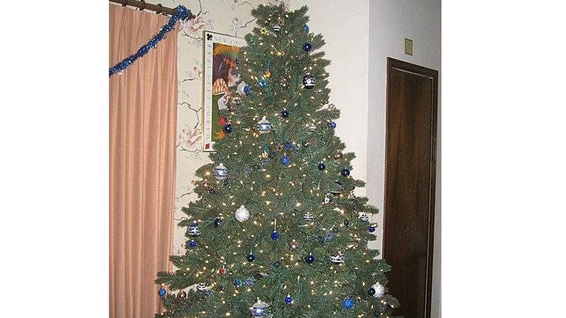 Christmas Tree Without Ornaments Best Home