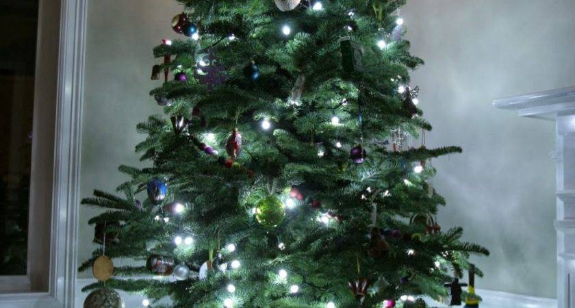 Christmas Tree Without Ornaments Home Design