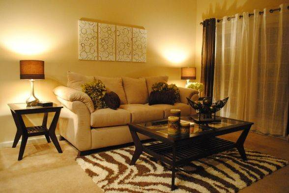 College Apartment Living Room Designs