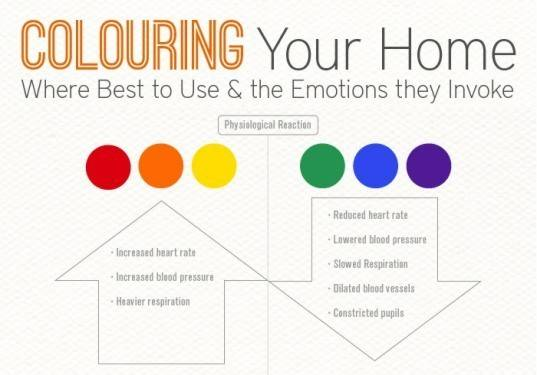Coloring Your Home Interior Design Infographic