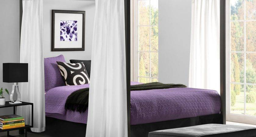 Contemporary Canopy Beds Metal Modern