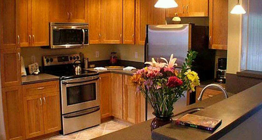 Contemporary Wooden Kitchen Cabinets Interior Decorating