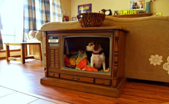 Cool Diy Upcycled Pet Bed Ideas Home Good