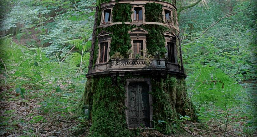 Cool Tree Houses Just Awesome