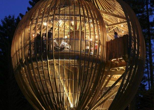 Cool Treehouses Around World Things