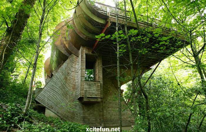 Coolest Tree House Ever Portland Xcitefun