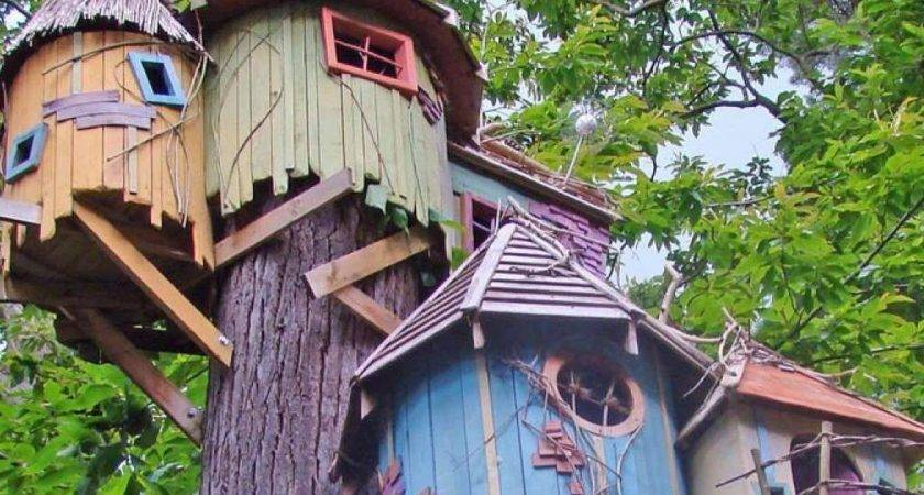 Coolest Treehouses World