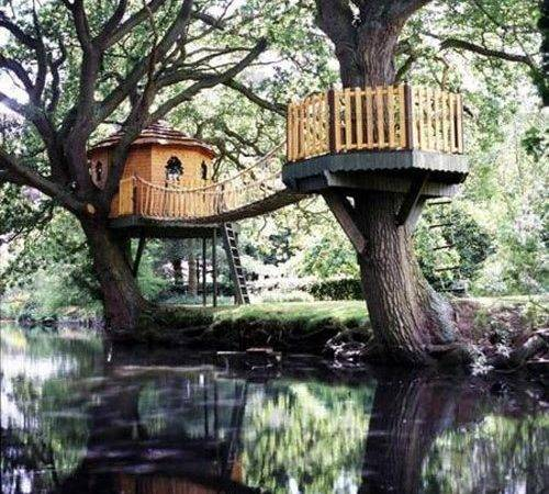 Coolpics Awesome Treehouses Always Wanted