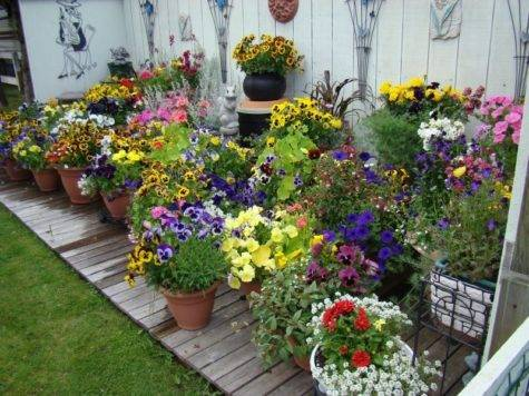 Create Clever Container Garden Using Old Wagon