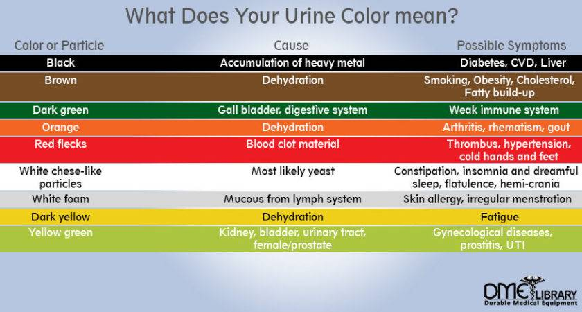 Different Urine Colors Pin Pinterest