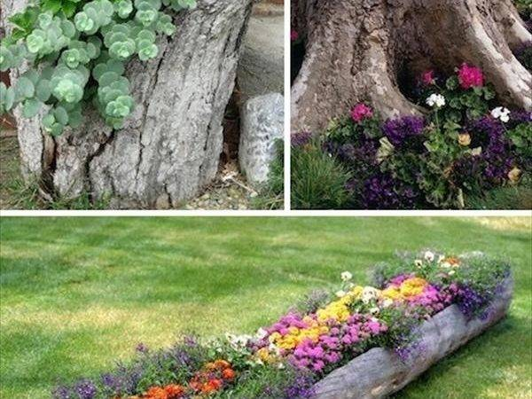 Diy Low Budget Garden Ideas Crafts