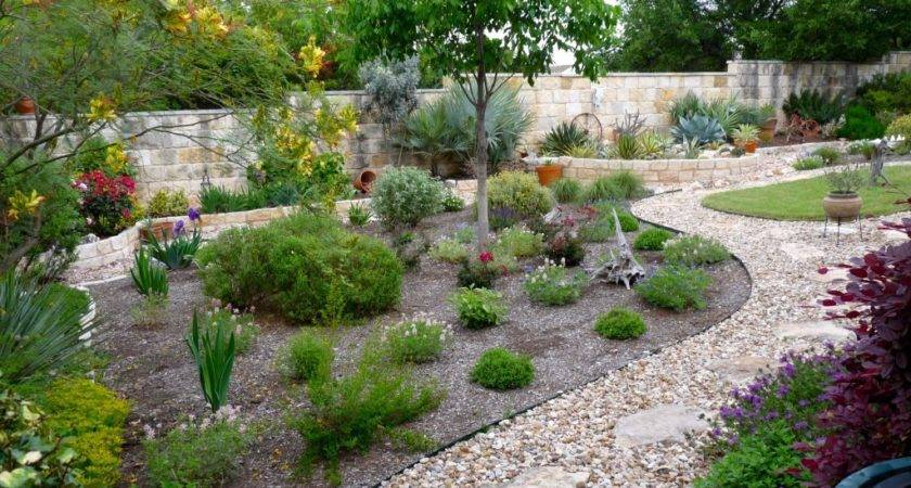 Drought Landscaping Landscape Tree Company