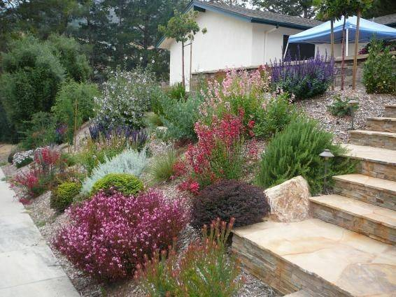 Drought Resistant Landscaping Cepagolf