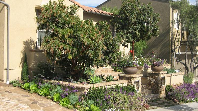 Drought Resistant Native Landscape Design Photos