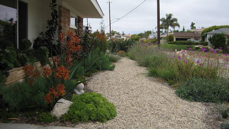 Drought Tolerant Landscape Design After