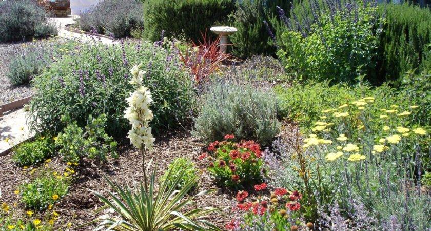 Drought Tolerant Landscape Design Herbs Home Ideas