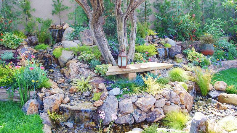 Drought Tolerant Landscaping Looks Lush Natural