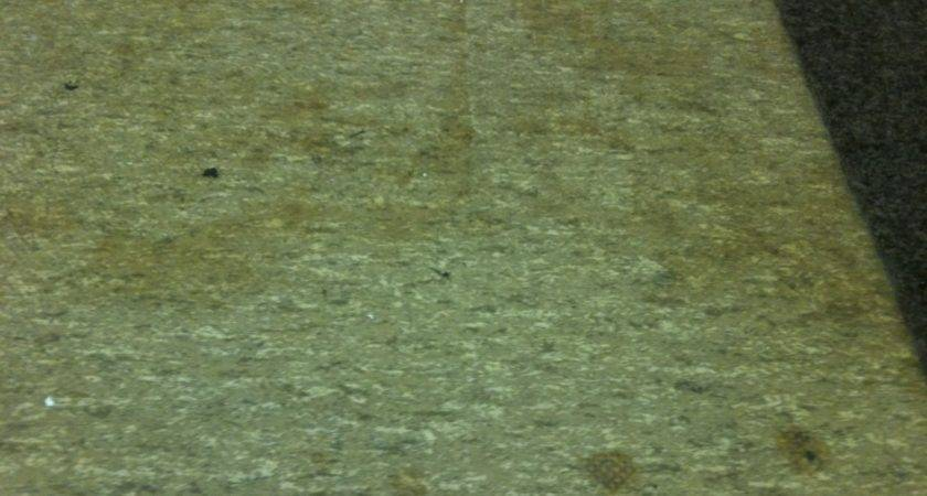 Eco Friendly Flooring Awesome Outstanding Ecofriendly