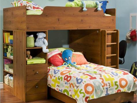 Elegant Fun Unique Bunk Bed Designs