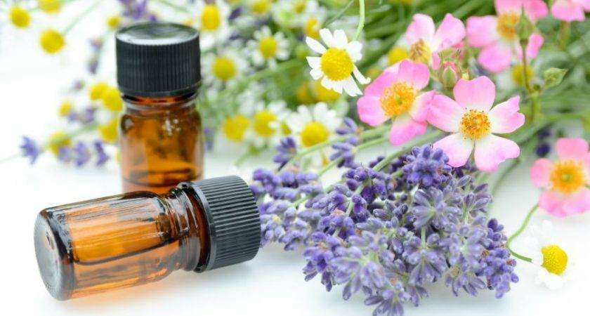 Essential Oils Your Health Nourishing Home
