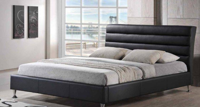 Exotic Leather Luxury Platform Bed Houston Texas