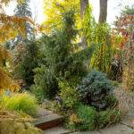 Fall Landscaping Ideas Mosaic Colors Shapes Scents