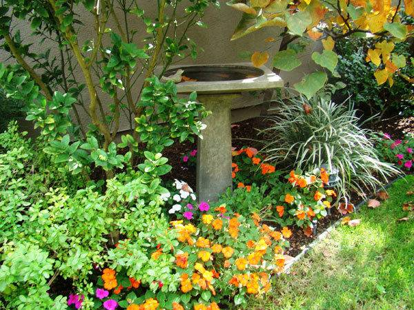 Fall Landscaping Ideas Outdoortheme